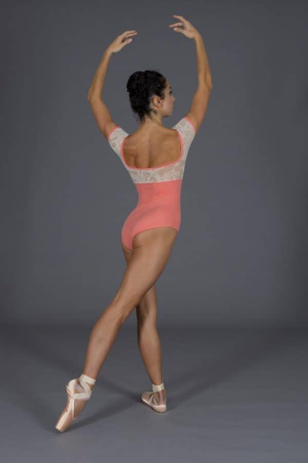 Body Danza Safari